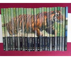 Natural Killers-Ragadozók testözelben DVD 26db