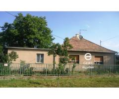 Családi ház nagy telekkel Letkés csendes utcájában eladó.