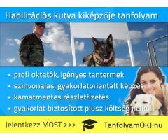 Habilitációs kutya kiképzője OKJ-s tanfolyam